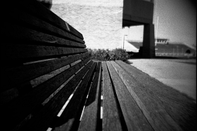 Olin Hall Bench