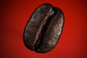 A Coffee Bean 2