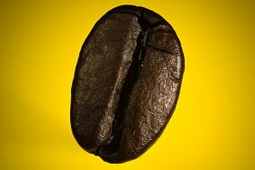 A Coffee Bean 3